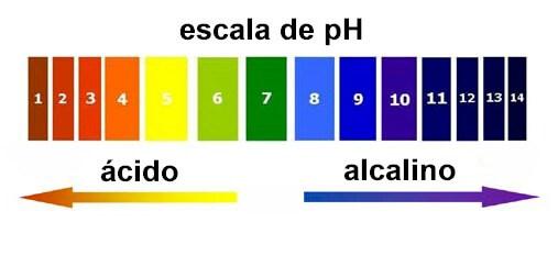 água-alcalina-escala-pH